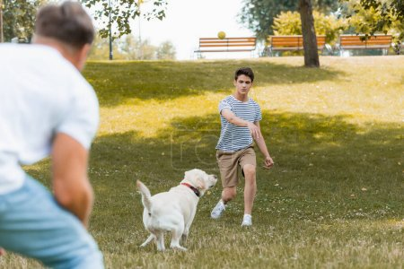 selective focus of teenager son and father playing with dog outside