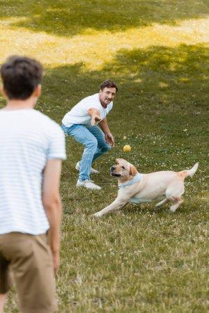 Photo pour Foyer sélectif de père lancer balle près de chien et fils adolescent dans le parc - image libre de droit