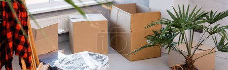 panoramic crop of carton boxes on floor near plants and easel, moving concept