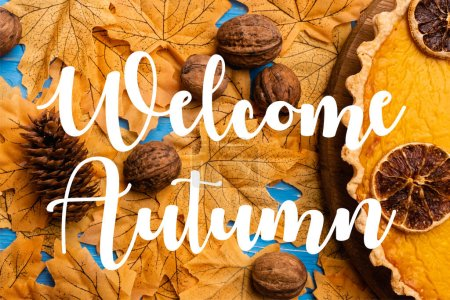 top view of pumpkin pie on foliage with walnuts and cone near welcome autumn lettering