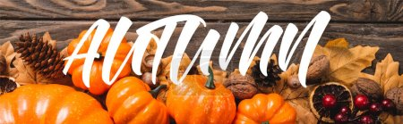 top view of decoration with pumpkins near autumn lettering on wooden background, panoramic shot