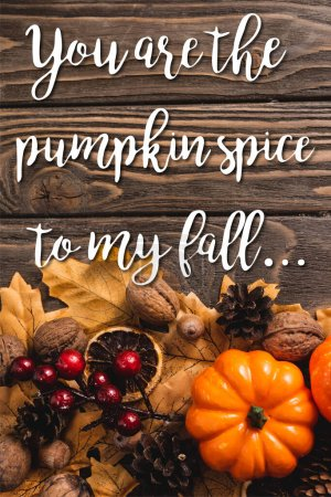 top view of autumnal decoration and pumpkin near you are the pumpkin spice to my fall lettering on wooden background