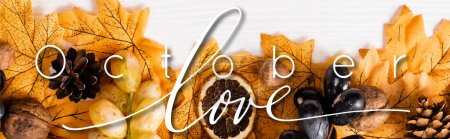 Photo for Top view of autumnal decoration and grapes near october love lettering on white background, panoramic shot - Royalty Free Image