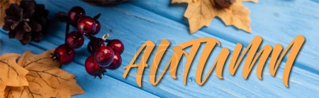 Photo for Panoramic concept of autumnal leaves, berries, acorns and cones near autumn lettering on blue wooden background - Royalty Free Image