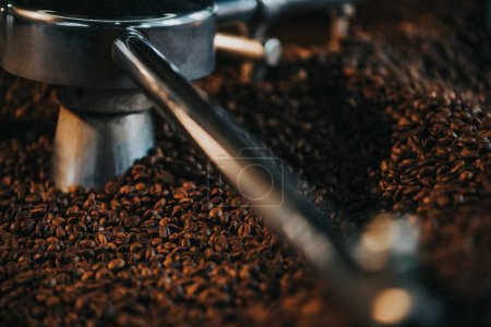 Photo pour Torréfacteur professionnel avec des grains de café torréfiés frais - image libre de droit
