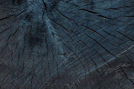 close-up view of dark grey cracked wooden textured background