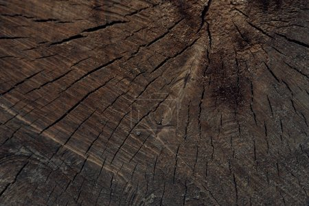 close-up view of dark brown cracked wooden textured background