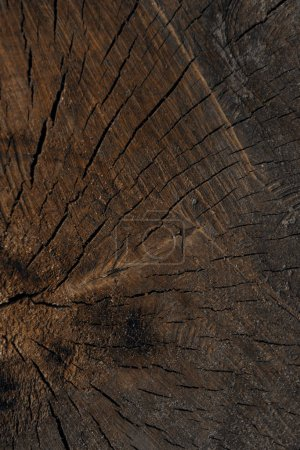 dark brown cracked wooden texture, full frame view