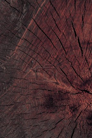 close-up view of dark brown cracked wooden texture