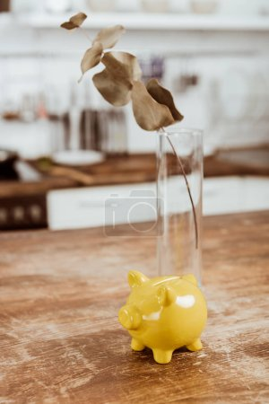 selective focus of branch in vase and piggy bank at wooden table
