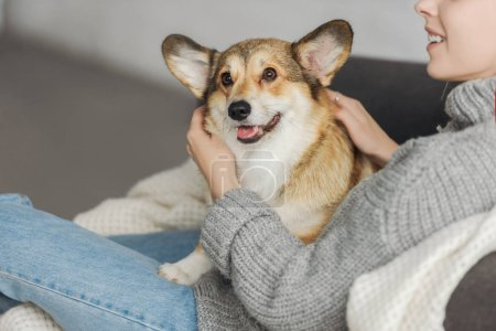 cropped shot of smiling young woman relaxing on couch with her corgi dog