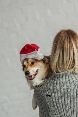 rear view of woman carrying cute corgi dog in santa hat