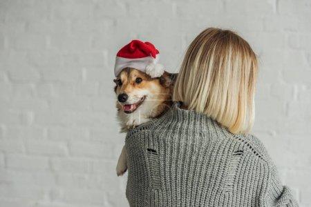 rear view of woman carrying adorable corgi dog in santa hat