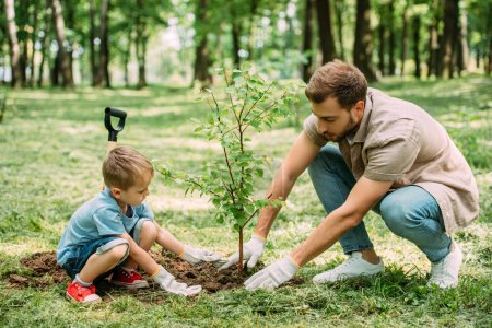 side view of father and son planting tree at park