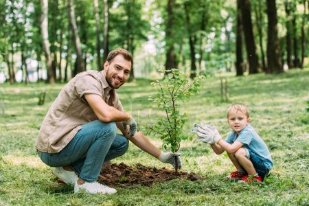 happy father and son squatting near seedling at park