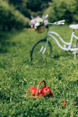 selective focus of wicker basket with ripe apples and retro bicycle parked behind at countryside