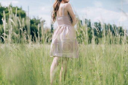 Photo pour Vue partielle de la femme en robe élégante avec les cheveux longs debout dans la prairie seule - image libre de droit