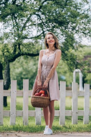 beautiful smiling woman with wicker basket with ripe apples at countryside