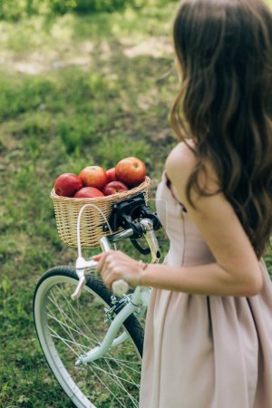 partial view of woman in dress holding retro bicycle with wicker basket full of ripe apples at countryside