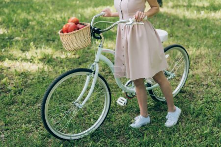 cropped shot of woman in dress holding retro bicycle with wicker basket full of ripe apples at countryside