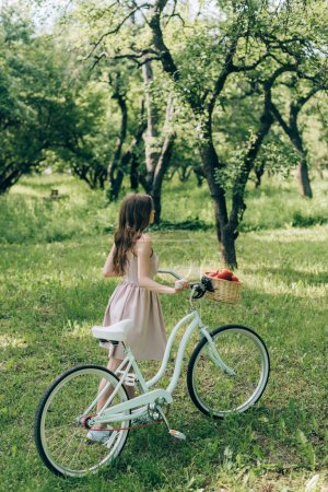 partial view of young woman in dress holding retro bicycle with wicker basket full of ripe apples at countryside