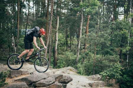 side view of male extreme cyclist in protective helmet doing stunt on mountain bicycle in forest