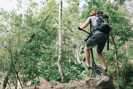 rear view of male trial biker in protective helmet balancing on back wheel of mountain bike in forest