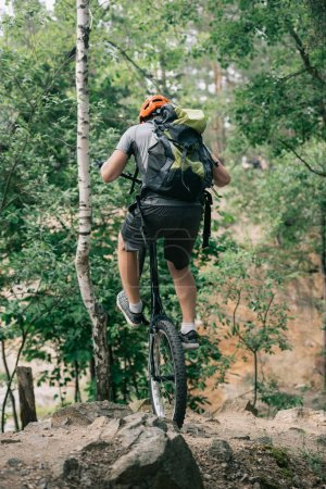back view of male extreme cyclist in protective helmet balancing on back wheel of mountain bike in forest