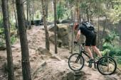 """Постер, картина, фотообои """"вид сбоку мужчин крайняя велосипедист в защитный шлем, езда на горном велосипеде в лесу"""""""