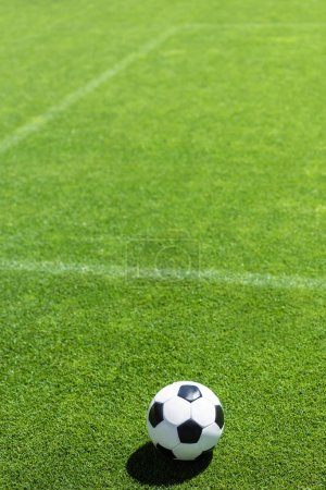 high angle view of soccer ball lying on green grass
