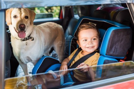 smiling adorable toddler boy in safety seat with labrador dog on backseat