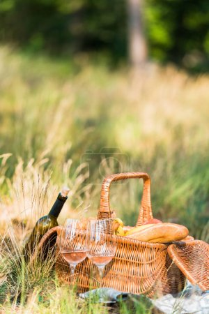 wine bottle, glasses and basket with loaves on grass at picnic