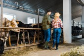 back view of couple of farmers walking in stable with cows