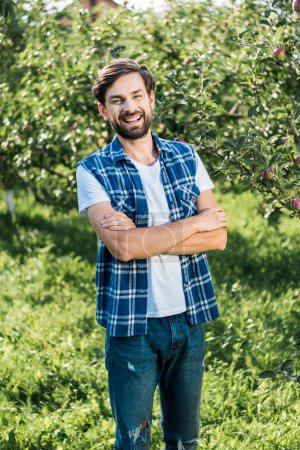 laughing handsome farmer standing with crossed arms in apple garden at farm