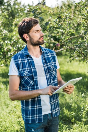 handsome farmer holding tablet in apple garden at farm and looking away