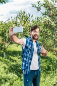 happy farmer showing thumb up to harvest and taking selfie with smartphone in apple garden