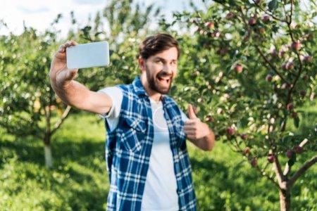 Photo pour Mise au point sélective d'agriculteur montrant pouce jusqu'à la récolte et prise selfie smartphone dans le jardin de la pomme - image libre de droit