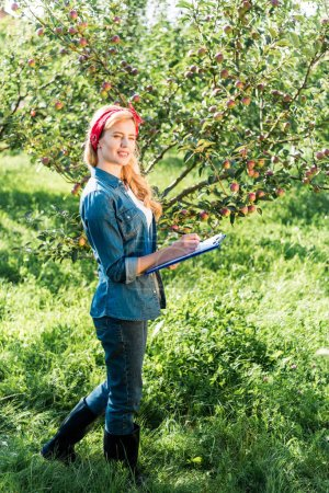 attractive farmer examining harvest in apple garden at farm