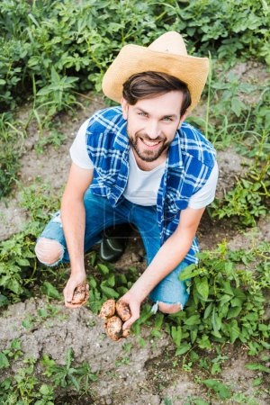 high angle view of handsome farmer squatting in field at farm and holding ripe potatoes