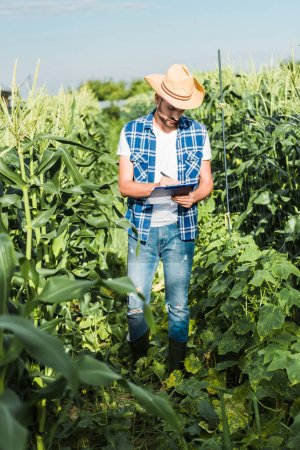 handsome farmer in straw hat checking harvest with clipboard in field at farm