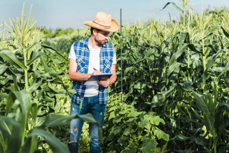 handsome farmer checking harvest with clipboard in field at farm