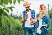 happy couple of farmers holding ripe tomatoes in field at farm