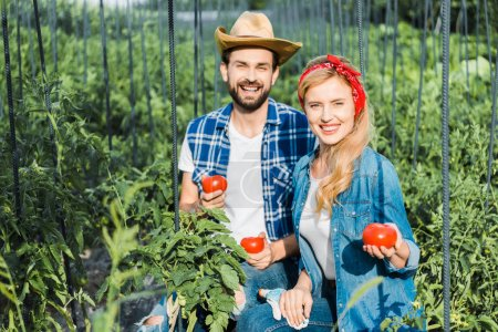 happy couple of farmers holding ripe tomatoes in field at farm and looking at camera