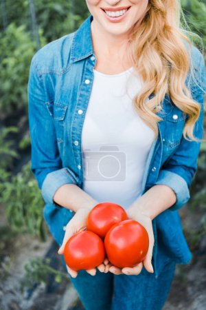 cropped image of smiling farmer holding ripe organic tomatoes in field at farm