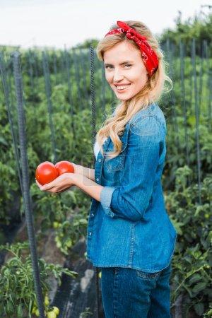 attractive farmer holding ripe organic tomatoes in field at farm