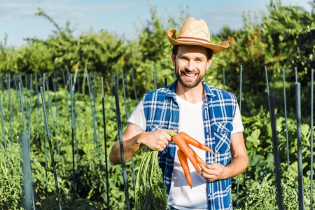 smiling handsome farmer holding organic carrots in field at farm