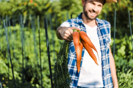 handsome farmer showing organic carrots in field at farm