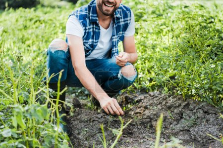 Cropped image of smiling farmer planting cardamom seeds in field at farm
