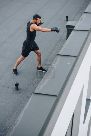 side view of boxer training on roof