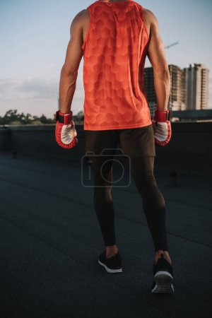 back view of sportsman walking with boxing gloves on roof